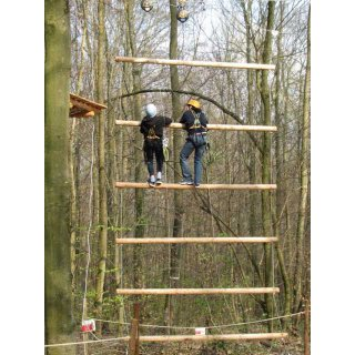 Rungs for Jacobs Ladder
